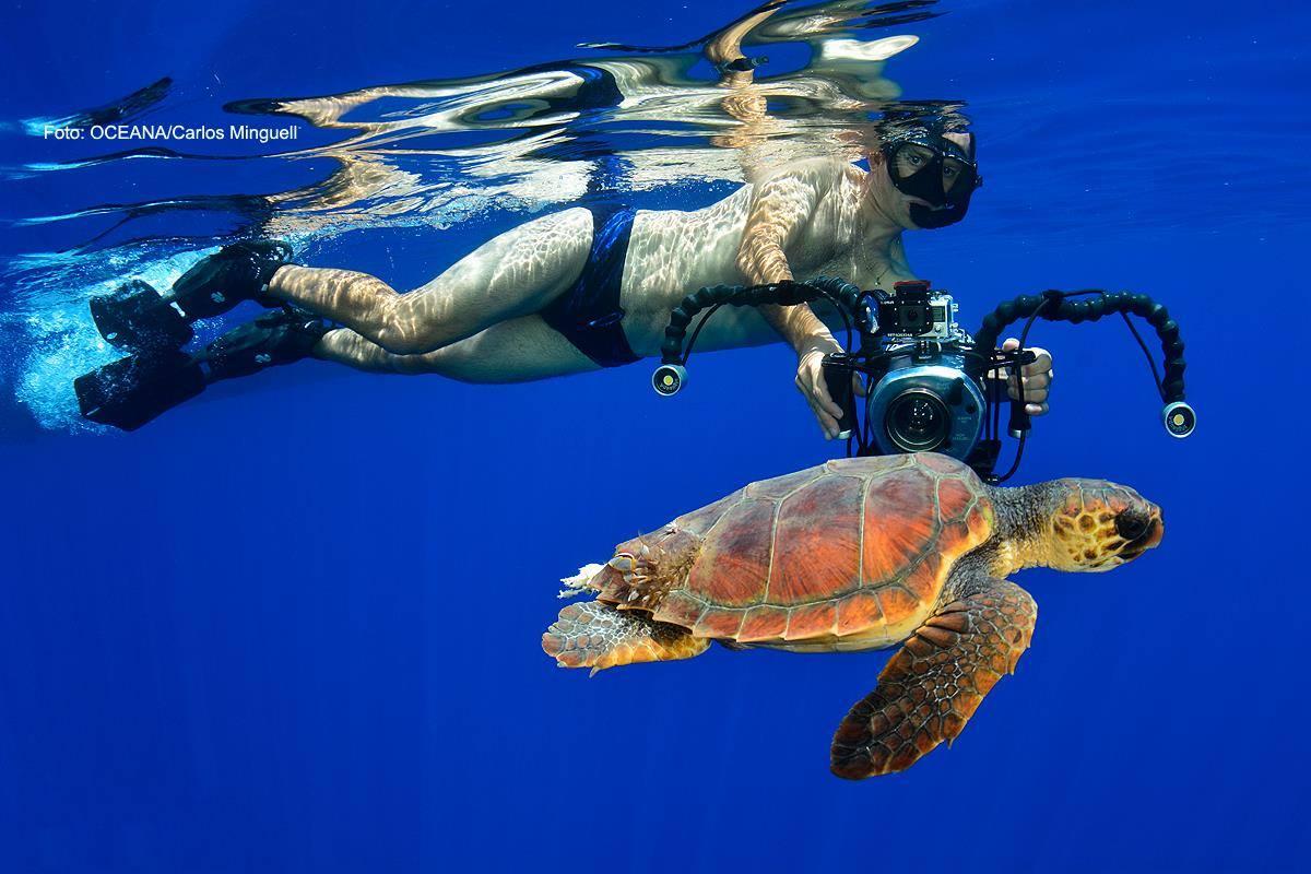 Kike Talledo grabando a una tortuga