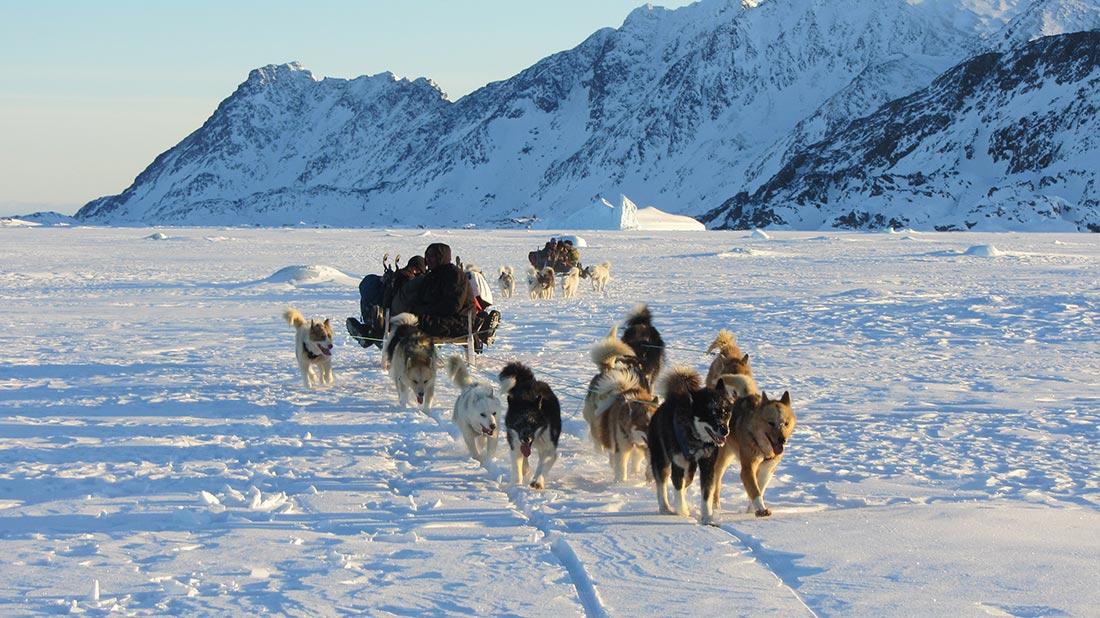 Cazadores en trineo de perros. Groenlandia (2013)