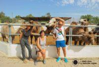 Los Camellos de Almería nos cuentan su historia. Ursula y su pasión por los dromedarios