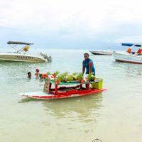 La cocina auténtica de isla Mauricio. Street food