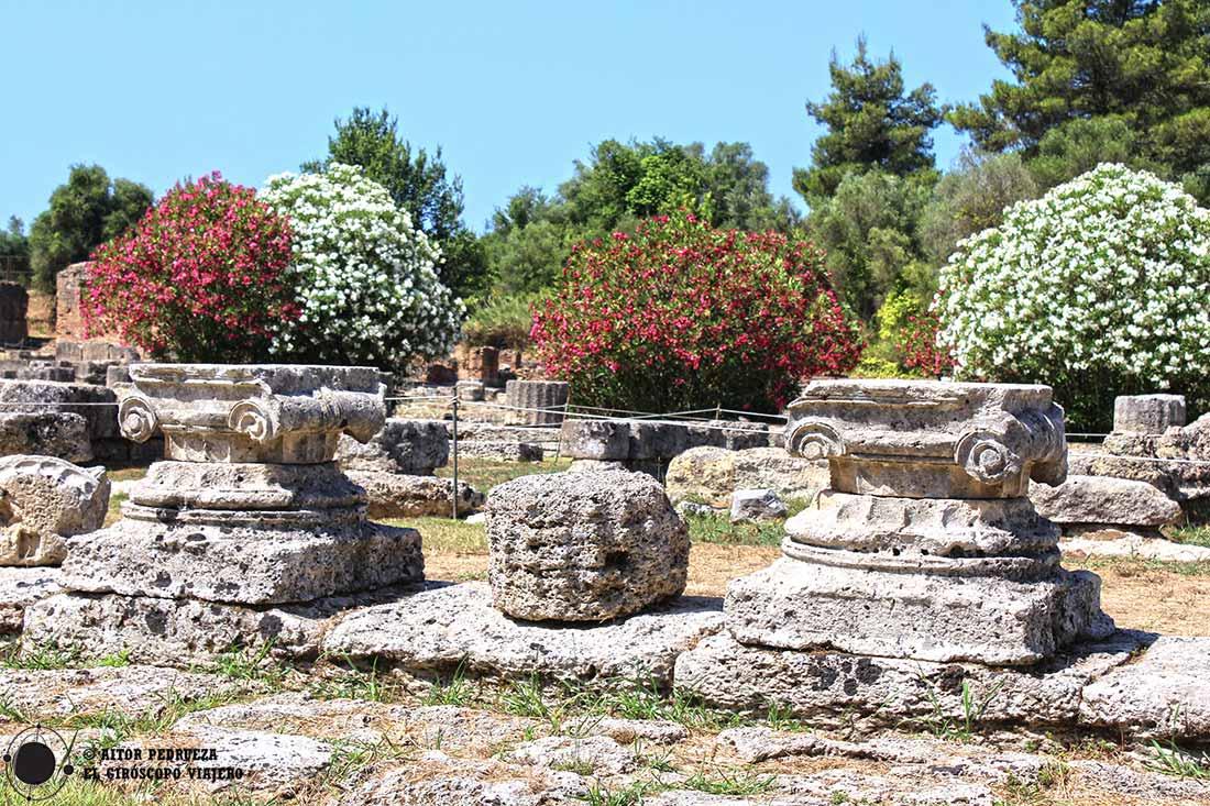 Restos de columnas entre un paisaje de flores en el yacimiento de Olimpia