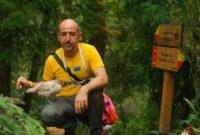 La asombrosa ruta donde viven gallos y gatos en la isla de São Miguel de Azores