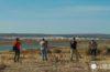 Andalucía Global Bird Weekend desde Cádiz. Encuentro virtual de avistamiento de aves