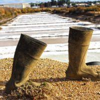 Visita a las Salinas del Alemán en Isla Cristina. Sal ecológica de Huelva