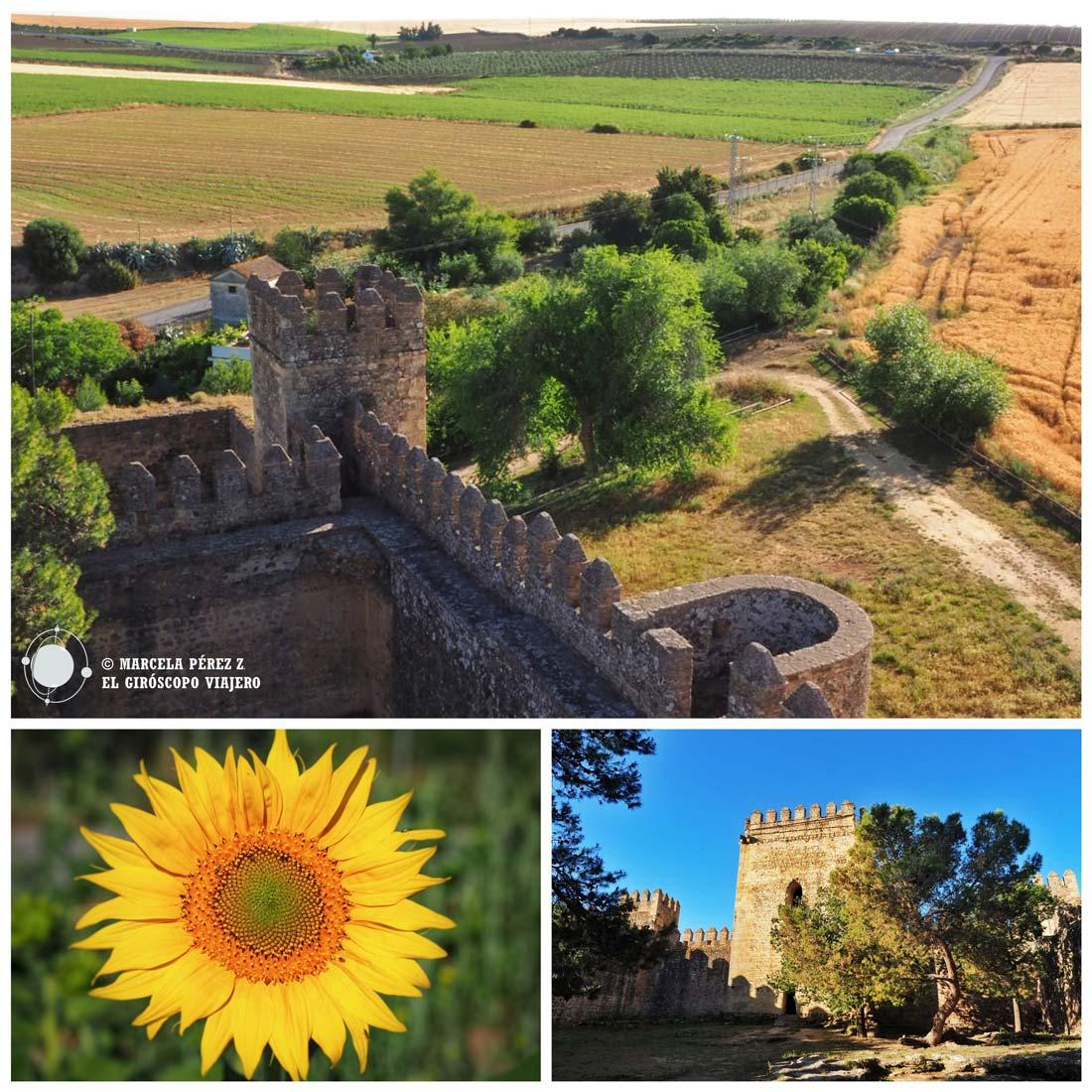Detalles del Castillo de las Aguzaderas en El Coronil