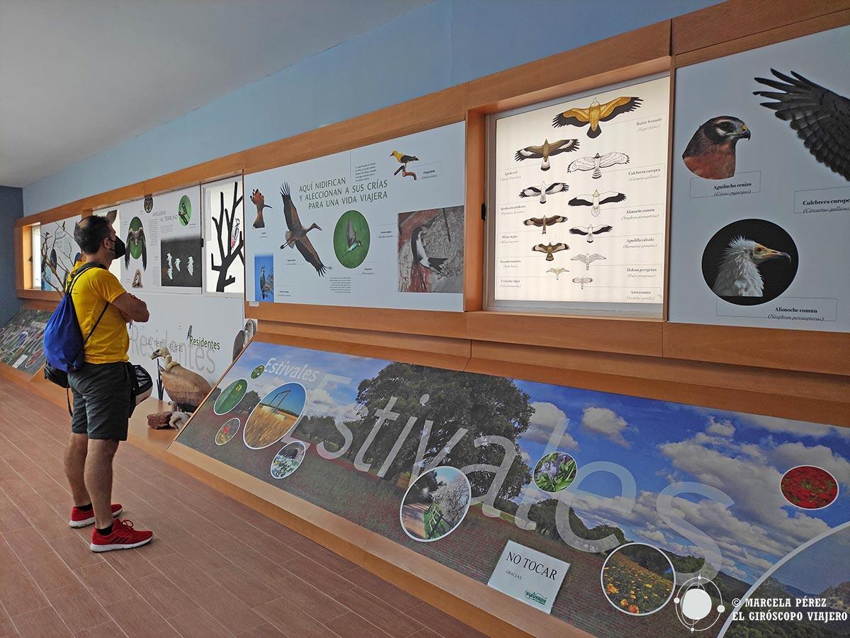 Centro de Interpretación y Observatorio ornitológico de Zaframagón
