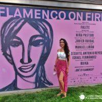 Al calor del Festival Flamenco on Fire de Pamplona